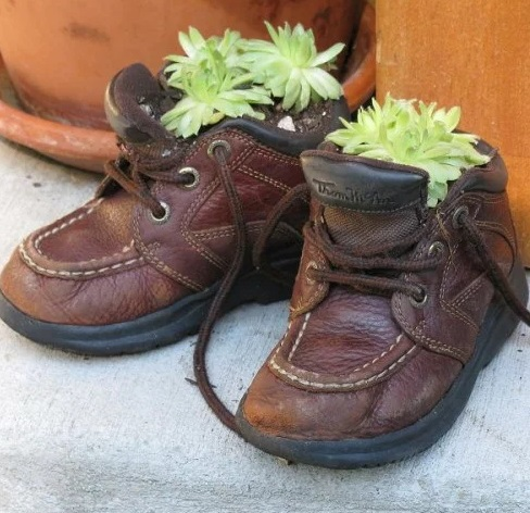 Small child's shoe Planter