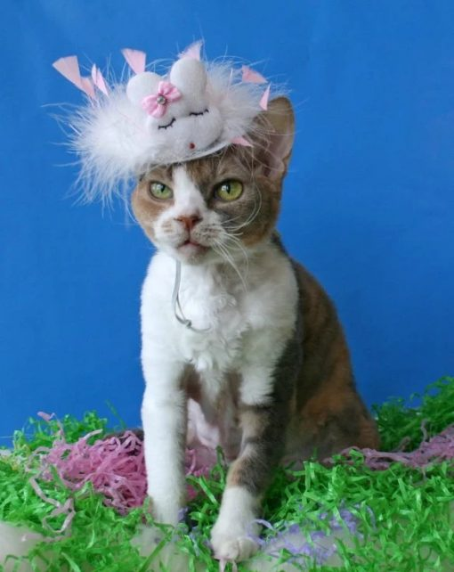 Angry Easter Cat