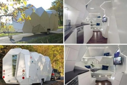 Multicellular Caravan