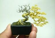 Top 10 Creative and Unusual Bonsai Trees