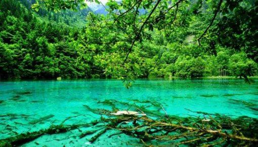 Five-Flower Lake