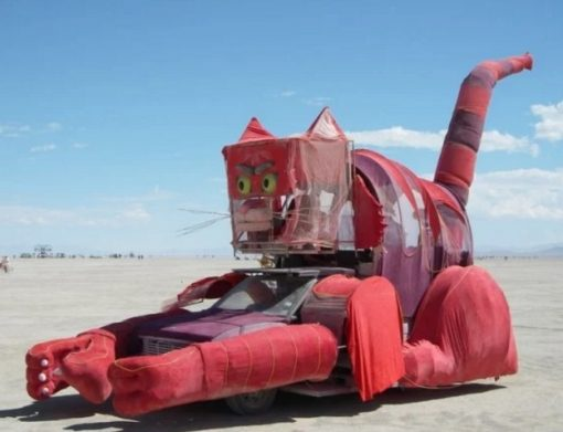 The red cat car