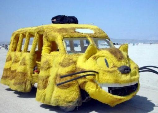 Furry cat school bus