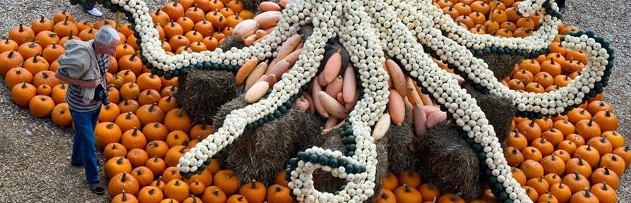Top 10 Amazing Pumpkin Sculptures (Halloween Special)