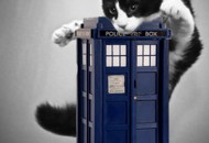 Doctor Who: If the Last 10 Doctors Were Cats….