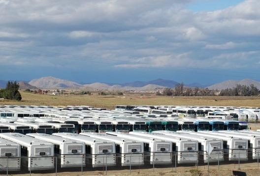 Graveyard of Buses
