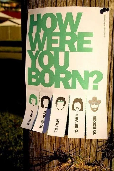 How Were You Born Tear Off Posters