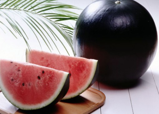 Top 10 Weird and Very Unusual Melons