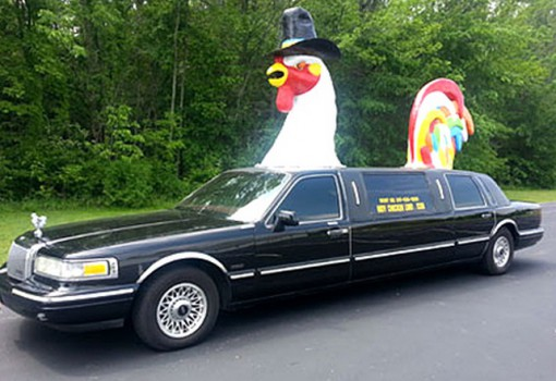 Top 10 Clucking Chicken Shaped Cars