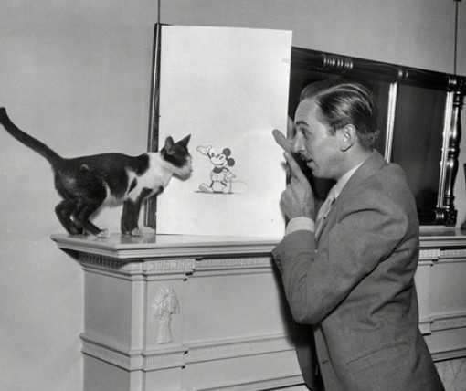 This Cat Is WIth Walt Disney