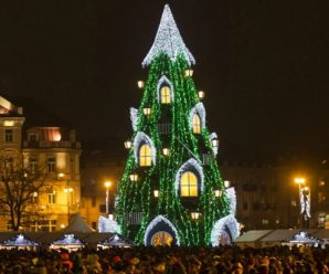 Top 10 Countries With the World's Biggest Christmas Trees