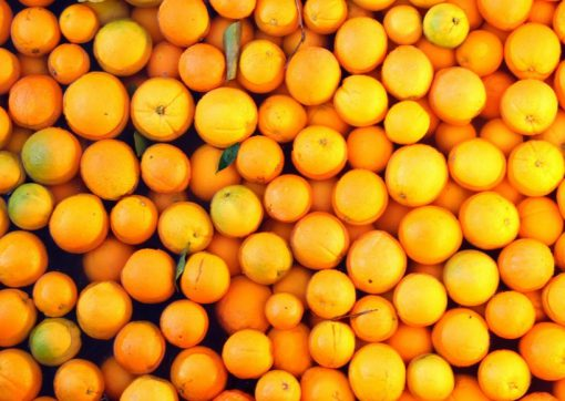 Mexico Orange Production