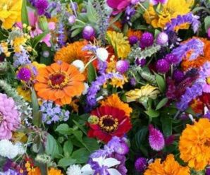 The 10 Most Popular Flowers Grown in the UK