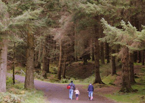Queen Elizabeth Forest Park, Scotland