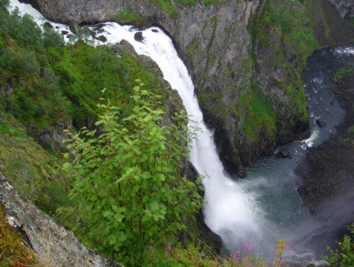 Canonteign Falls, England