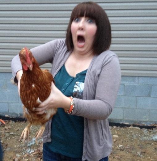 Chickens (Alektorophobia)